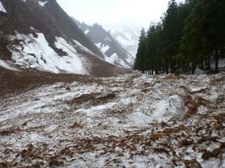 s04雪崩の痕