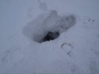 s08雪の裂け目に落ちる1