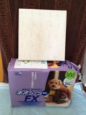 20130428江戸川区K様