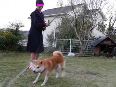 snap_tikagenoko414_2013110221335.jpg