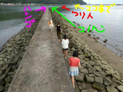 snap_tikagenoko414_2013921352.jpg
