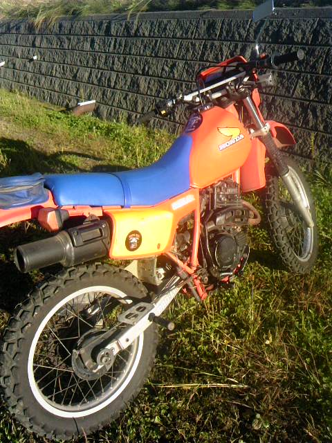 XLX 001