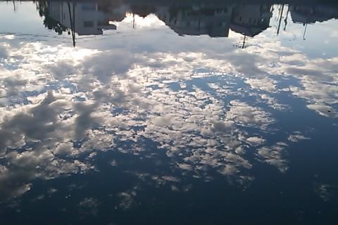 水面に映るヒツジ雲