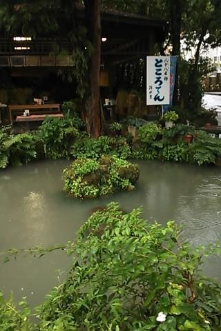 清水屋さん庭