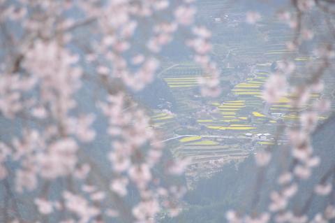 神山町江田付近