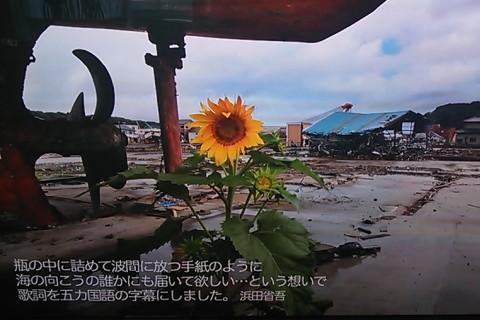 浜田省吾コンサート映像より、そのⅡ