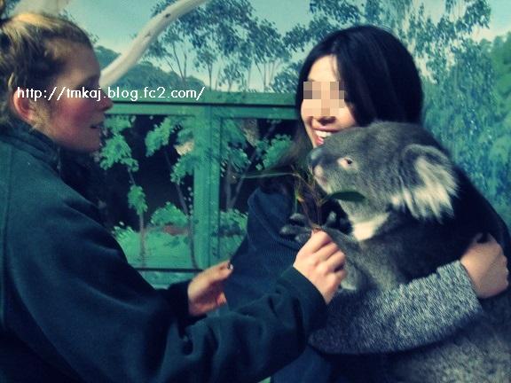 Aoi and koala
