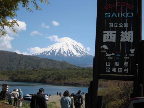 山梨の西湖で富士山堂々と多く見えたり観光客