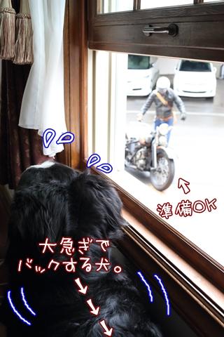 7G6A4434.jpg