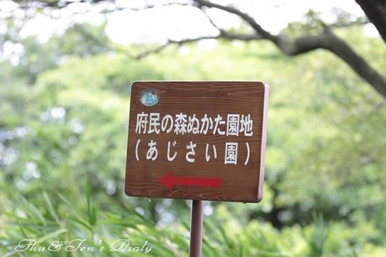 009IMG_4373.jpg
