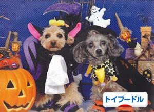 010bn_halloween.jpg