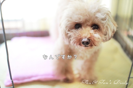 011IMG_5578.jpg