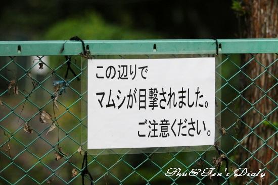 013IMG_8492.jpg