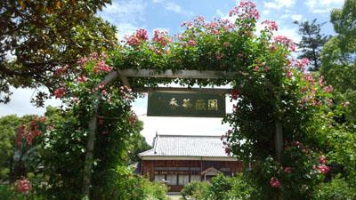 吉香薔薇園