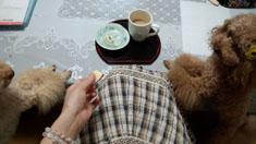 お茶の時間6