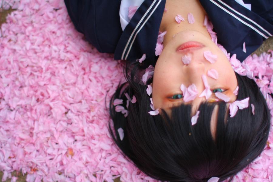 sakusaku14.jpg