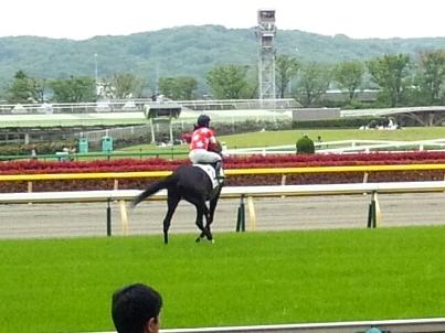 2013-0420-本馬場2
