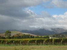 L-ニュージーランド