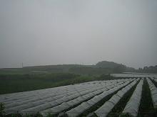 2006070502.jpg