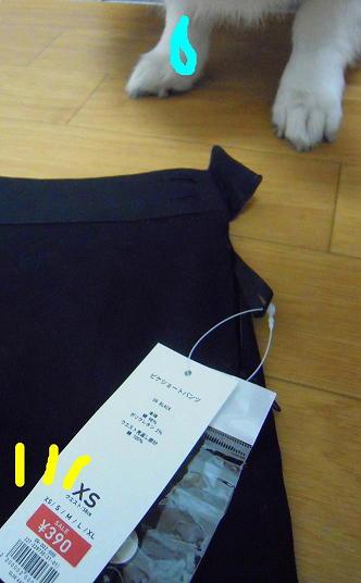 39スカート(1)(1)