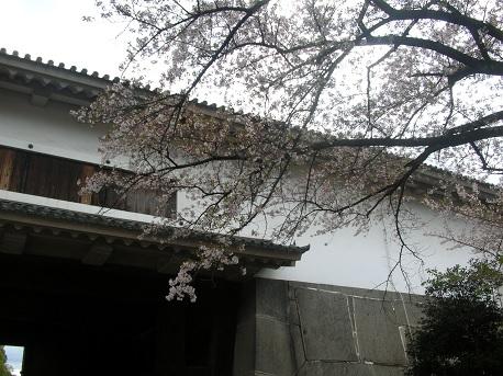 大阪城西の丸庭園-1