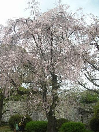 大阪城西の丸庭園-2