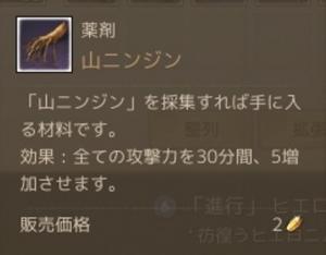 山ニンジン