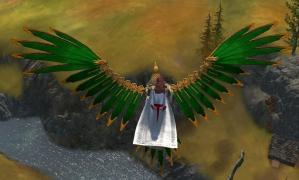 自然の盟約者の翼1
