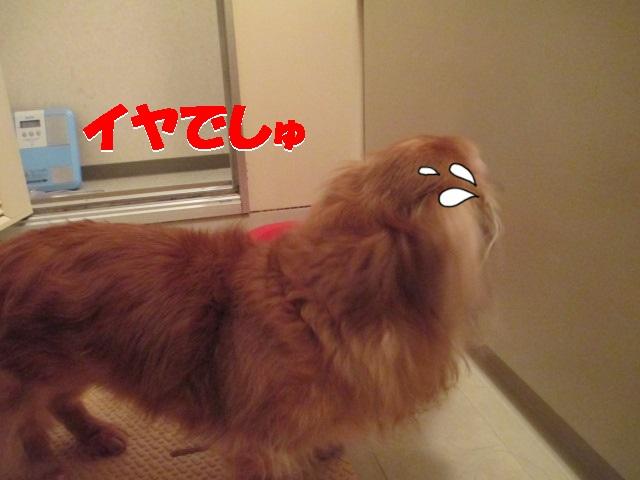 2013.10.16風呂