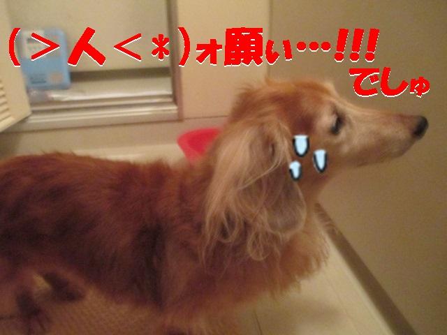 2013.10.16風呂2