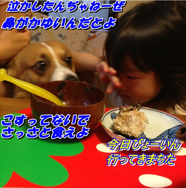 IMG_4594_20130927231508f2c.jpg