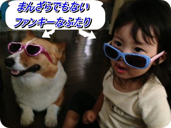 IMG_7228_20130621223543.jpg