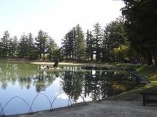 9:46 大泉が池の 出島石組と池中立石