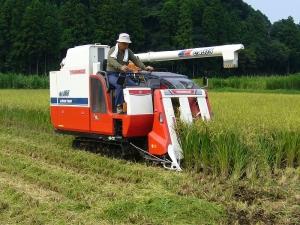 刈取脱穀作業車