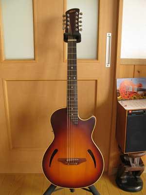 ヤイリカスタムギター01