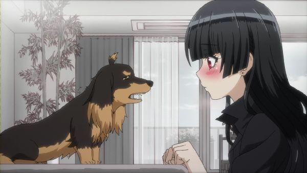 犬とハサミ12 (45)