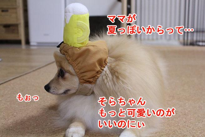 09_09_07.jpg