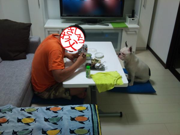パパと晩酌