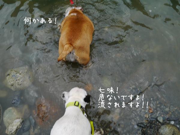 水遊び17