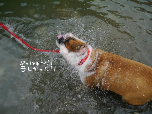 水遊び19