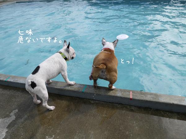水遊び22