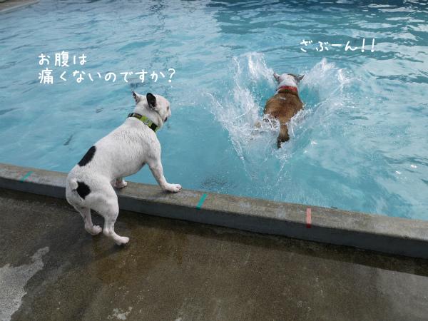 水遊び23