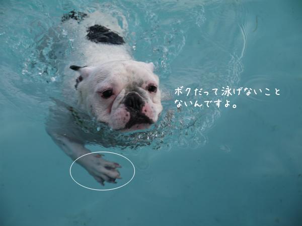 水遊び12