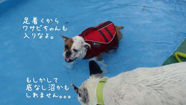 水遊び24