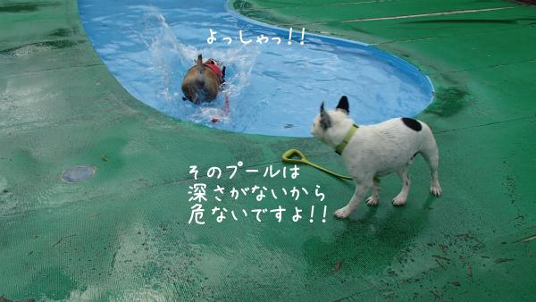 水遊び25