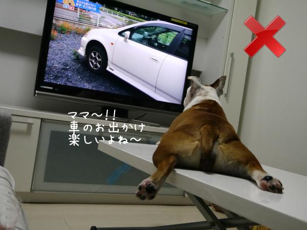 テレビの見方3