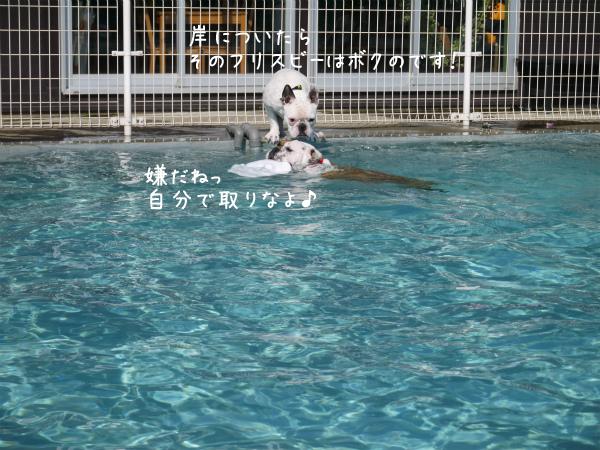 水遊び26