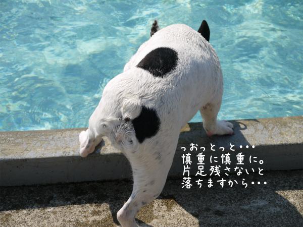 水遊び13