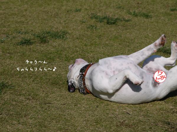 Fetch6