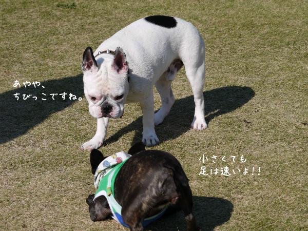Fetch9